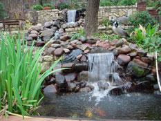 Ponds 1
