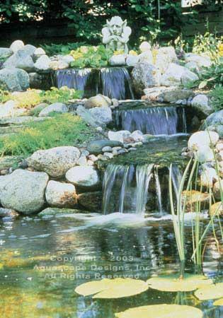 Ponds 7